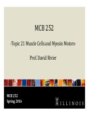 MCB 252 Topic 21 Muscle Cells and Myosin Motors Sp16.pdf