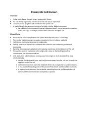 Biology 171 Study Guide Prokaryotic Cell Division