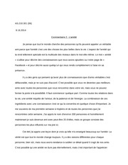 Essay Commentaire 1