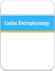 Worksheets Special Senses Worksheet special senses worksheet updated doc this 39 pages cardiac electrophysiology student pptx