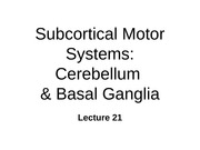 ~BN21 subcortical motor control