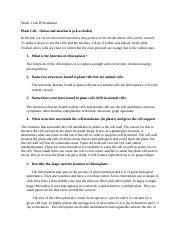 Week 3 Lab B Worksheet