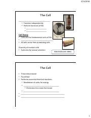 Bio 3 Lecture 5 Notes_The Cell_cell membrane_proteins.pdf