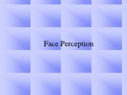 Lecture 13 face perception