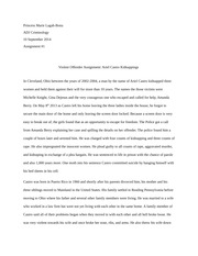 legal essay on domestic violence act