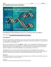 dna_replication_practice_worksheet__2_.doc