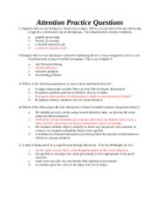 Attention Practice Questions