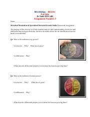 12microbialmetabilosmandspecializedmediaessayquvmcc 1 pages assignment number 3 ccuart Images