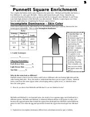 punnett square enrichment packet.docx