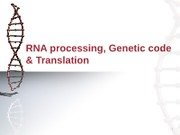 DNA processing