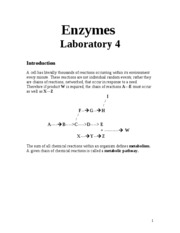 lab 4 enzymes umuc However, this is an answer key, which means, you should put it in your own  words here is a sample for the pre lab questions answered: lab 4: enzymes.