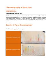 Chromatography of Food Dyes.docx