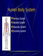 Human Body System.ppt