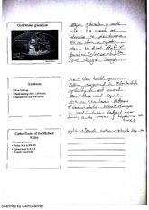 Gondwanan Glaciation Lecture Notes 2