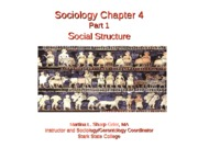 Sociology_Chapter_4_Part_1_Openstax