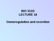 Lecture 18 osmoregulation and excretion posted
