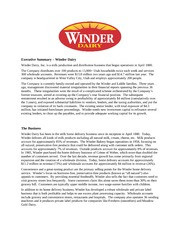 Assignment - Winder Case 1 - Exec Summ