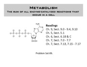 201-13-5-Metabolism II to post part A
