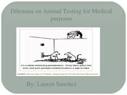 Dilemma on Animal Testing for Medical purposes