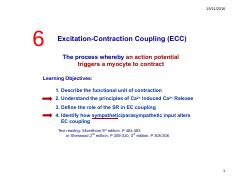 zhang_6-cardiac_excitation-contraction_coupling.pdf