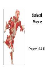 Lecture 6 - Muscles of the head and neck