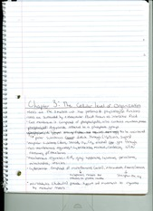 Chapter 3 notes (The cellular level of organization)