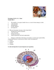 Psy101_Sample Quiz 1