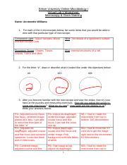 Virtual Lab 1 Worksheet - Keiser University Online ...