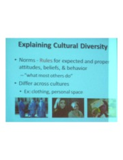 PSYCH 360 Social Psychology - Explaining Cultural Diversity