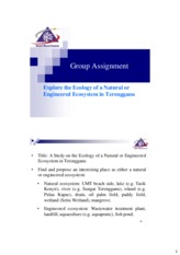Group assignment (Env Bio).pdf