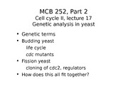 MCB 252 Genetic Analysis in Yeast Lecture
