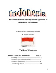 Indonesia final project 40 pages!!!!