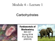 Module-4, Lecture-1 Carbohydrates