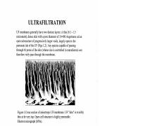 Ultrafiltration.pdf