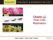 bio 101 How cells reproduce powerlecture 13th edition