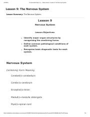 Lesson 9 - The Nervous System