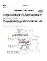 Polymerase Chain Reaction problem