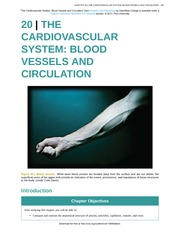 Chapter 20 - The Cardiovascular System - Blood Vessels and Circulation