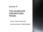 Lecture 9 - the Aggregate Expenditure Model