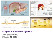 Week 6_Endocrine_Sys_Feb_14_2014_Compressed_As_Delivered