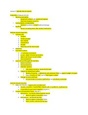 Lecture 9 Skeletal Muscle.docx