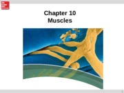 Chapter 10 Muscles.ppt