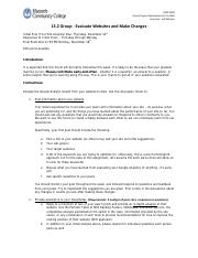 13.2 Group - Evaluate Websites and make changes - Fall 2013.pdf