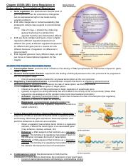 Chapter 15: Gene Regulation in Eukaryotes I: Transcriptional Regulation.docx