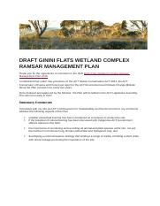 DRAFT-GININI-FLATS-WETLAND-RAMSAR-MANAGEMENT-PLAN-from-web-A13859846.doc