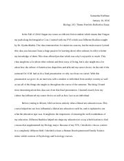 Theme Portfolio Reflection Essay.docx