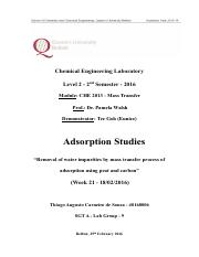 Adsorption Studies - Lab Report - Thiago Souza
