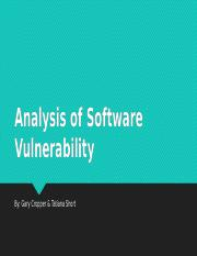 Analysis of Software Vulnerability