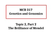 MCB317 Topic 2 Part 2 The Brilliance of Mendel Sp16.pptx
