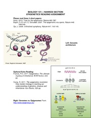 Biol121 Epigenetics Reading Assignment (1)
